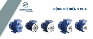 Động cơ điện Marelli Motori